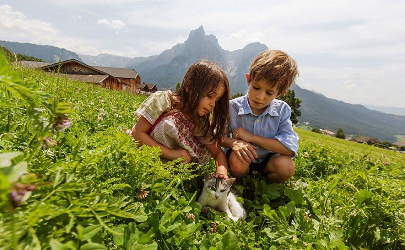 Südtiroler Bauernhöfe – Kuschelstunde mit Tierkindern