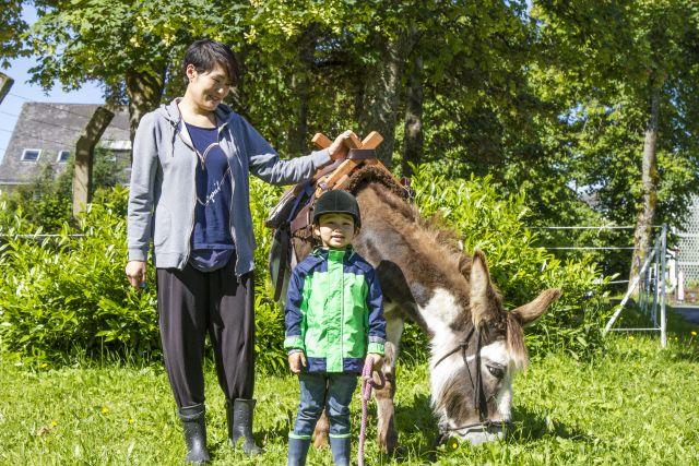 Ferienregion Winterberg – Eselwandern bis Kulinarik